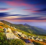 krajobraz górski - 40647297