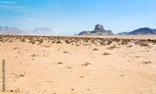 Fotobehang Midden Oosten Sphinx rock in Wadi Rum dessert