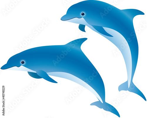 Staande foto Dolfijnen イルカ ジャンプ