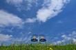 青空と椅子のある風景 C