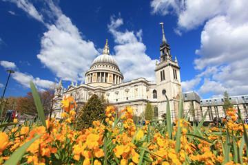 Fototapeta na wymiar St. Paul Cathedral with Garden