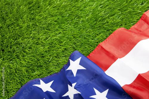 Foto op Plexiglas Texas American flag on green grass