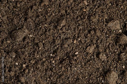 фотография  close-up of a soil