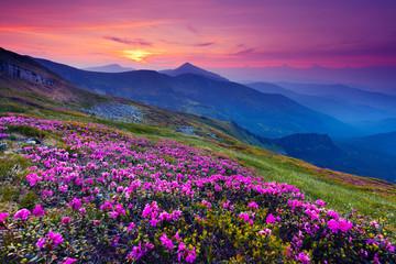 Fototapeta Natura mountain landscape