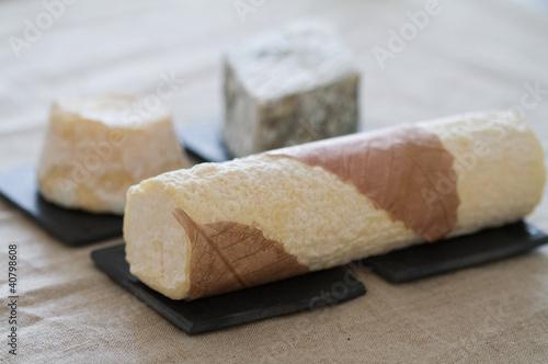 Staande foto Zuivelproducten fromages de chèvre