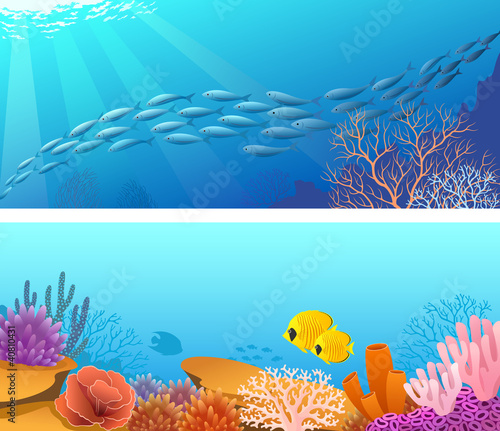 Banner życia morskiego