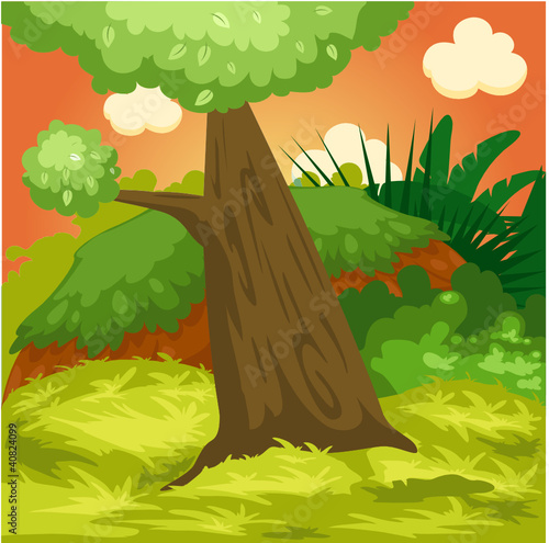 Aluminium Prints Forest animals landscape natural forest
