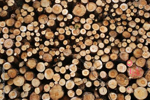 In de dag Brandhout textuur Lumber stacked