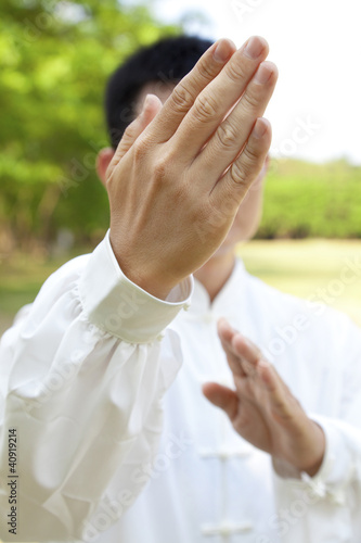 Fotografia hand of kung fu