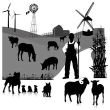 Vector Set Illustration: Farm ...