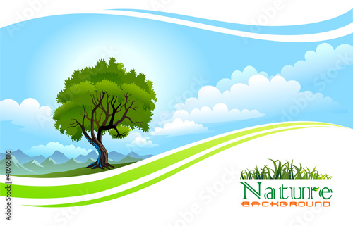 Fotobehang Wit Tree with Graphic Wave Background