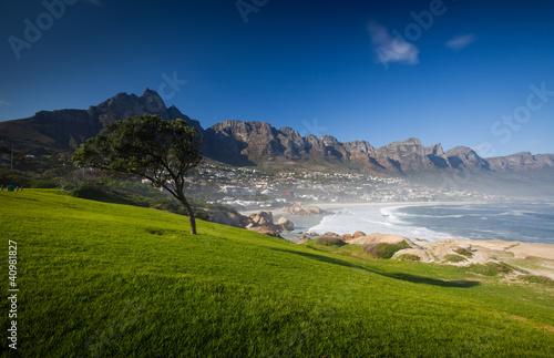 Poster Afrique du Sud Grass and Blue Sky