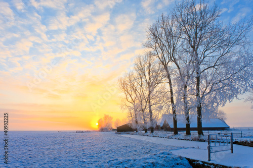 Poster de jardin Jaune de seuffre Winter landscape at sunset