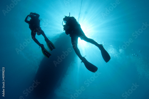 Garden Poster Diving sihlouetted scuba divers