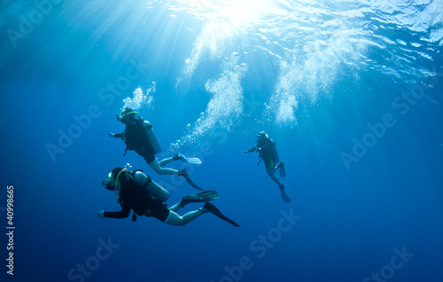 Garden Poster Diving scuba divers accend from a dive
