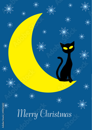 Tuinposter Hemel christmas vector illustration with cartoon cat on the moon