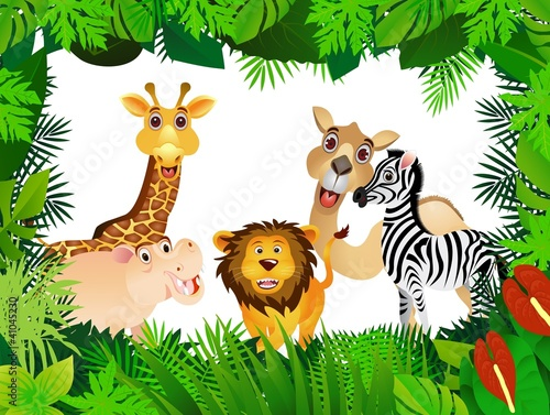 funny animal collection #41045230