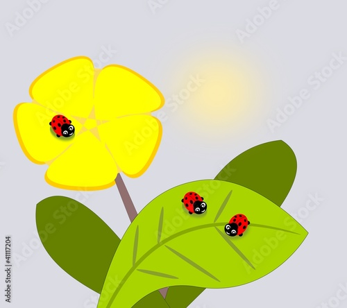 Poster Lieveheersbeestjes Three cute ladybugs and a yellow flower