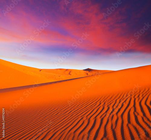 Foto op Aluminium Koraal Desert