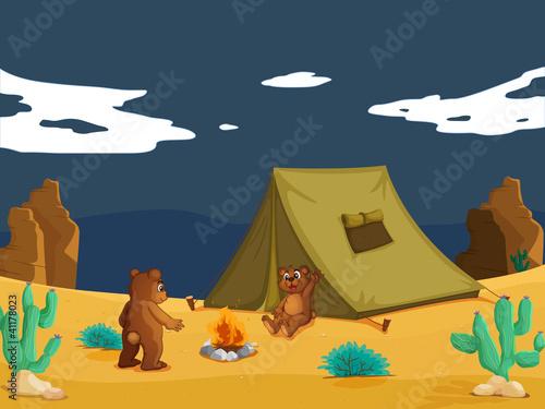 Wall Murals Bears Bears camping