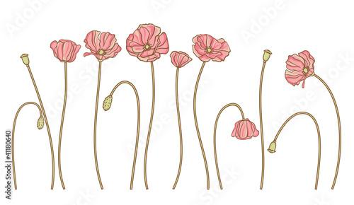 wektor-recznie-narysowac-kwiaty-zestaw-na-bialym-tle