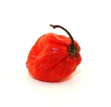 Piment Pepper Cayenne Caraibe ...