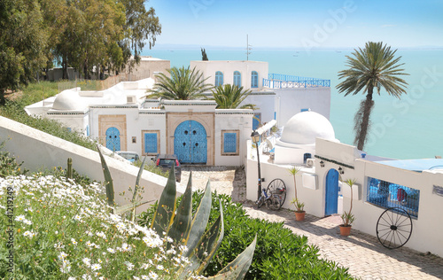 Photo sur Toile Tunisie Tunis Sidi Bou Said- HDR