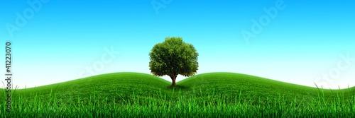 Foto op Plexiglas Groene Ecologie,