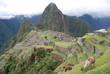 Dos llamas en las ruinas del Machu Picchu