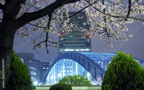 Deurstickers Tokyo Tokyo spring