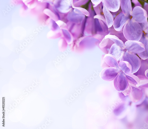 Spoed Foto op Canvas Lilac Art lilac flowers background