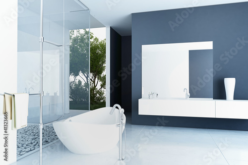 Valokuva  Modern Luxury Bathroom Design Interior