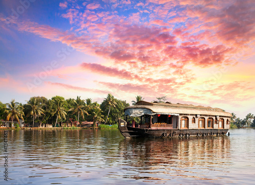 House boat in backwaters Wallpaper Mural