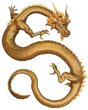 Lucky Chinese Dragon With Gold...