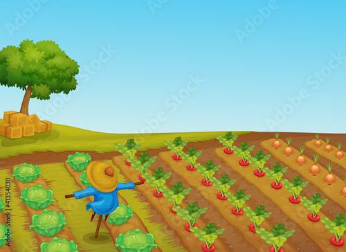 Spoed Foto op Canvas Boerderij scarecrow