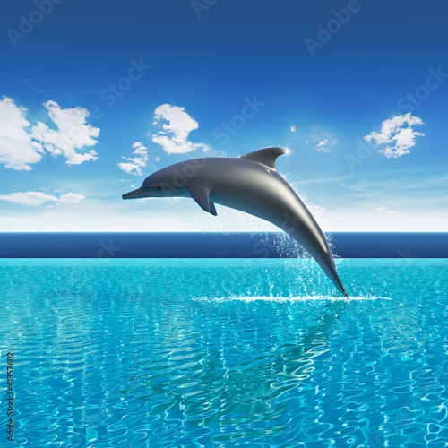 Poster de jardin Dauphins Dolphin jumps above pool water, summer sky aquarium