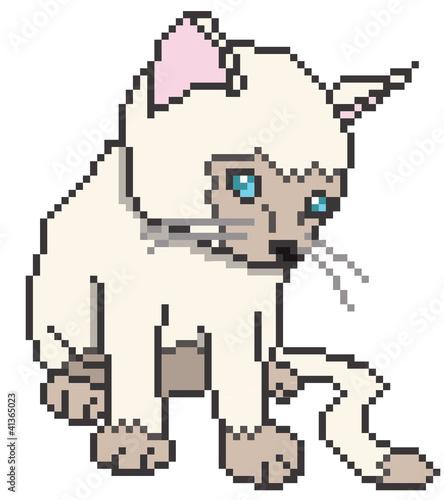Foto op Aluminium Pixel Pixel Kitten Isolated