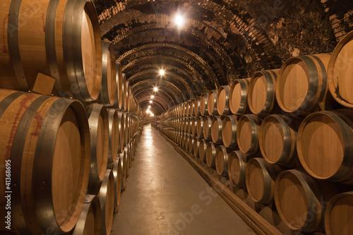 Photo Barriles de vino en la bodega