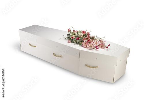 Obraz na plátně cardboard bio-degradable eco coffin isolated on white with clipp