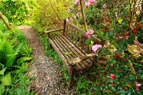 Papiers peints Azalea Beautiful romantic garden with wooden bench and azalea trees