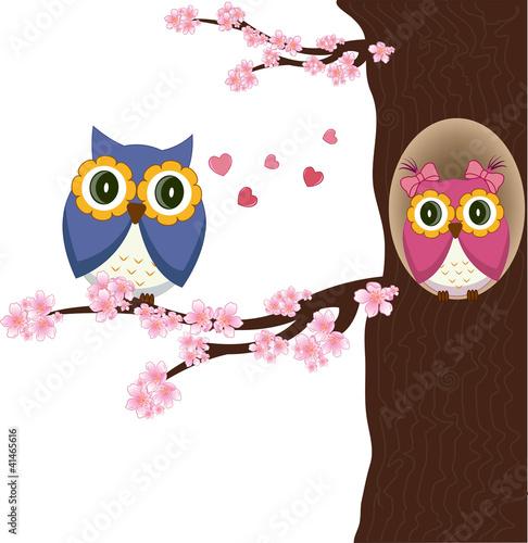 Papiers peints Hibou Owls on the tree