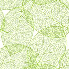 Fresh Green Leaves Background - Vector Illustration
