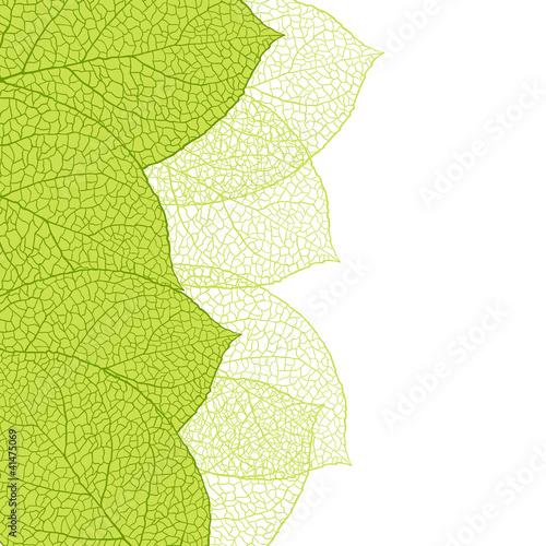 swiezy-zielony-pozostawia-tlo-ilustracji-wektorowych