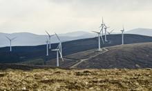 Wind Turbines Providing A Sust...