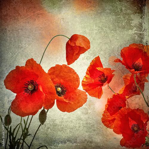 Obrazy do łazienki  kwiaty-makow-w-stylizacji-retro