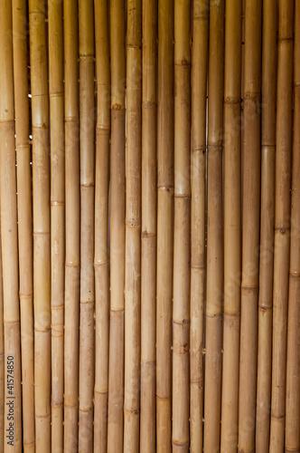 fototapeta na lodówkę bamboo