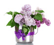 beautiful lilac flowers in metal bucket isolated on white