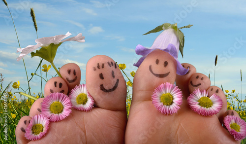Doppelrollo mit Motiv - Happy together: Feet on summer meadow (von doris oberfrank-list)