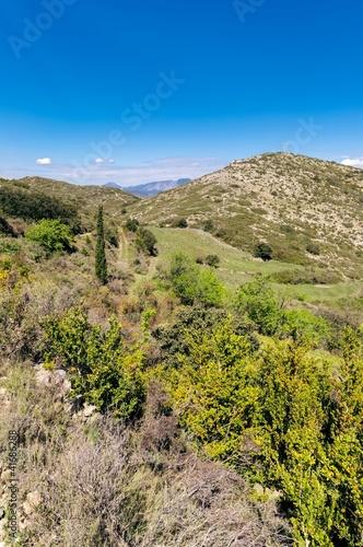 Fotografía  Paysage de Garrigue aride_Garrigue arid landscape.