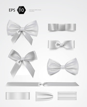 Vector Bow Collection